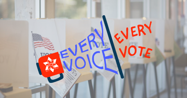 Every Voice Every Vote_Article